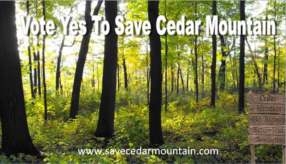 Vote Yes to Save Cedar Mountain